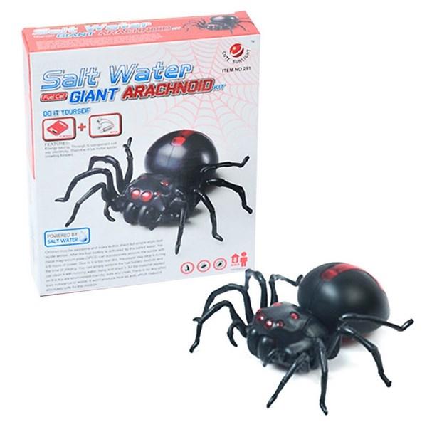 Pavouk na slanou vodu